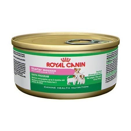 Royal Canin - starter - mousse - lata de 165grs